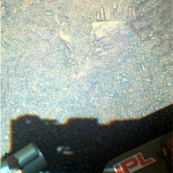 Sol 3431 Little Red Kaluta